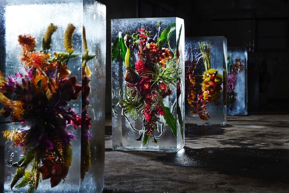 Azuma Makoto Iced flowers:Video Square universe= vimeo.jpg