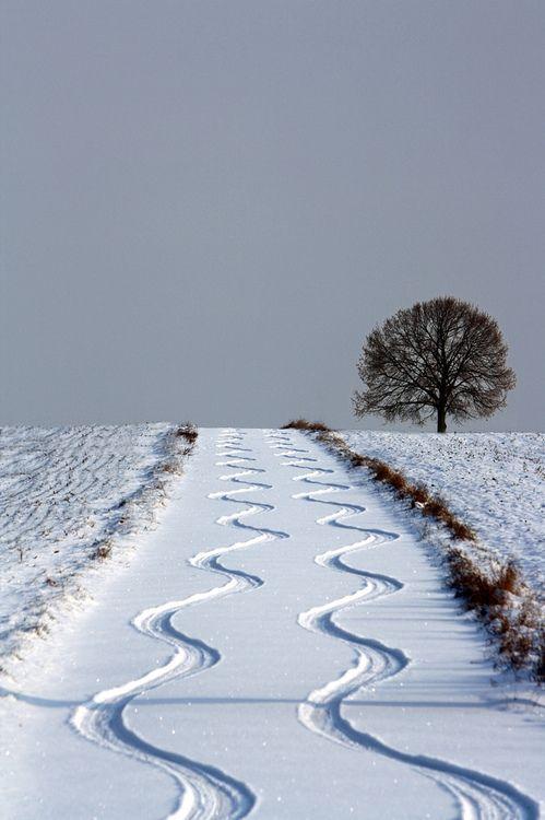 snow zig
